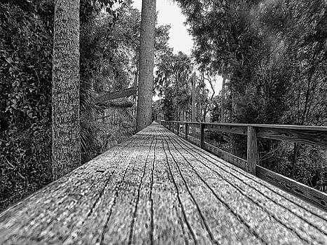The Secret Walkway by Mario Carta