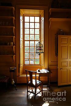 The Service Room Window by Rachel Morrison