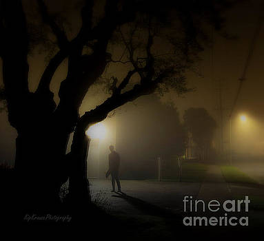 Silhouette - The Shadow by Kip Krause