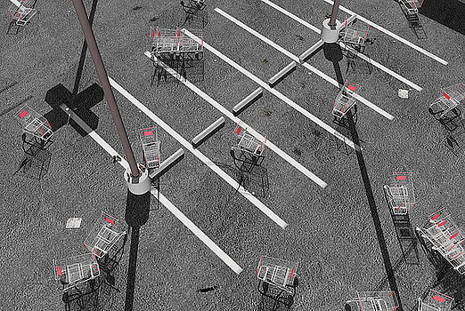 The Shopping Cart Fiasco by Peter J Sucy