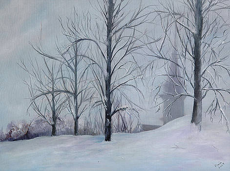 The Silence of Snow by Betty Pimm