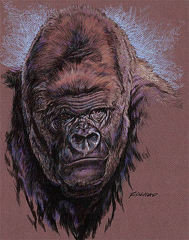 The Silverback solo by Richard W Cleveland