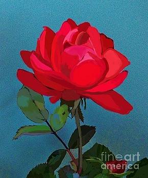 The Single Red Rose by Jeannie Allerton