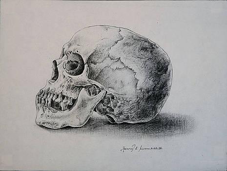 The Skull by Rosencruz  Sumera