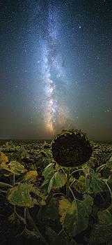 The Sky Above  by Aaron J Groen