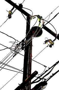 Cindy Nunn - The Sky Electrified