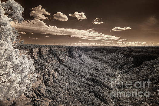 The Sky Tilts Down to the Canyon by William Fields