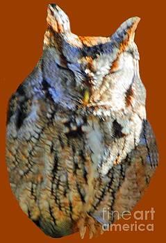 Jost Houk - The Sleeping Owl