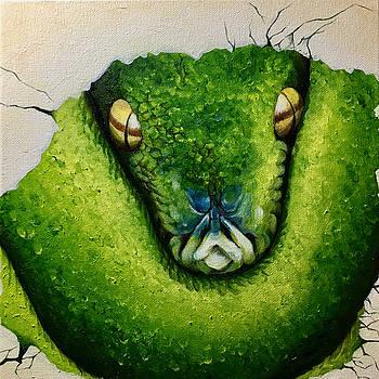 The Snake by Fu Tong Kang