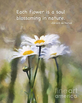 The Soul of a Flower by Kerri Farley