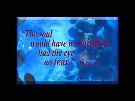 Tamara Kulish - The Soul Would Have No Rainbow,Had The Eye No Tear