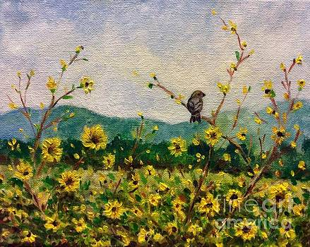 The sparrow and the sunflowers by Hilary England
