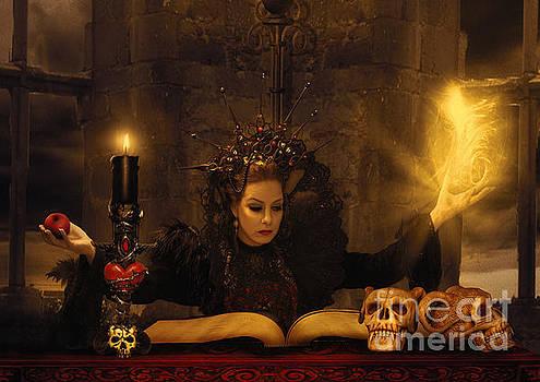 The Spell by the Evil Queen by Babette Van den Berg