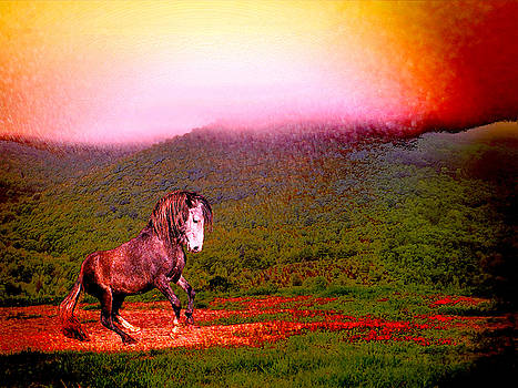 The Stallion Has Faith by Patricia Keller