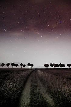 The Stars by Gerd Doerfler