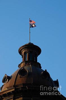 Susanne Van Hulst - The State Flag of South Carolina in Columbia SC