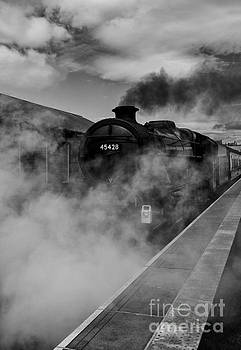 The Steam Locomotive Eric Treacy  by Roger Green