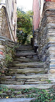 The Stone Stairs by Rebecca Smith