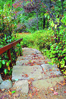 Jost Houk - The Stone Steps
