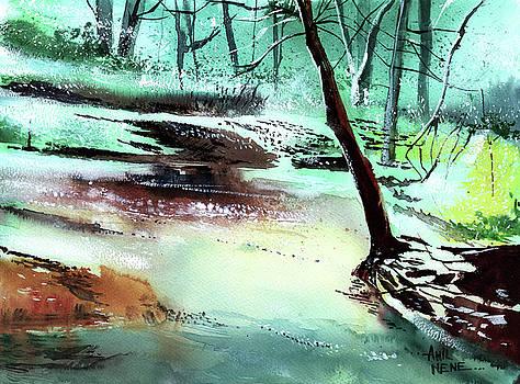 The Stream by Anil Nene