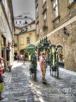 The streets of Vienna Austria by Yury Bashkin