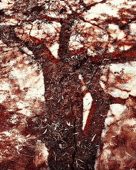The Strength of Africa - Shadow Tree Nr 1 by Menega Sabidussi