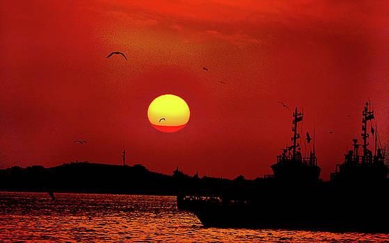 The Sun by Farah Faizal