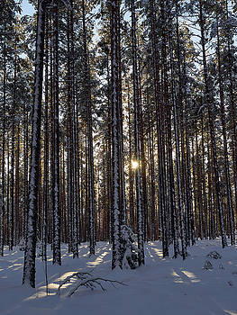 The sun is there by Jouko Lehto
