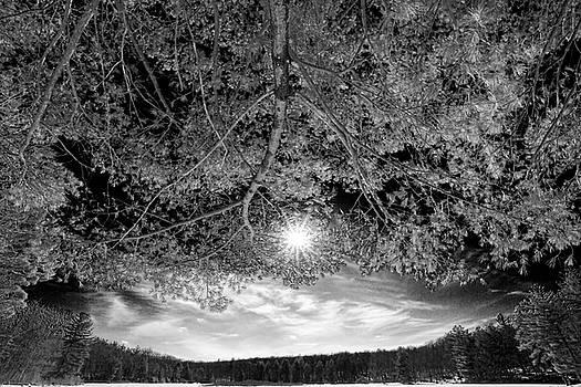 Dawn J Benko - The Sun Over Stony Lake