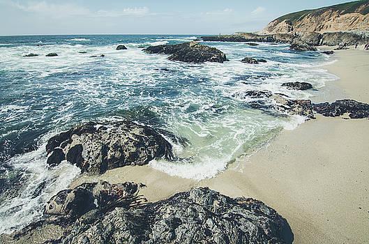 Margaret Pitcher - The Sunny Shoreline