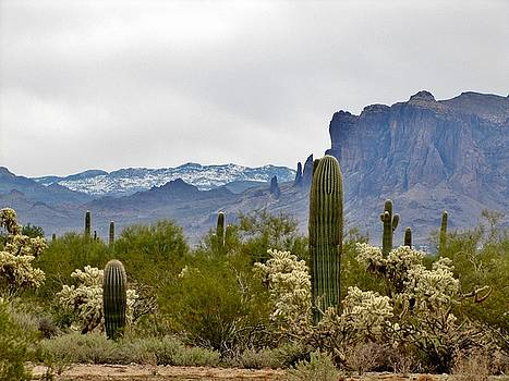 Marilyn Smith - The Superstitions  Landscape