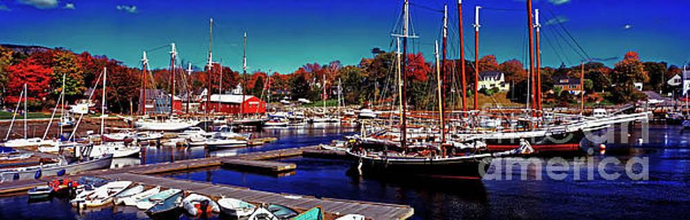 The Surprise in Camden Harbor Maine by Tom Jelen