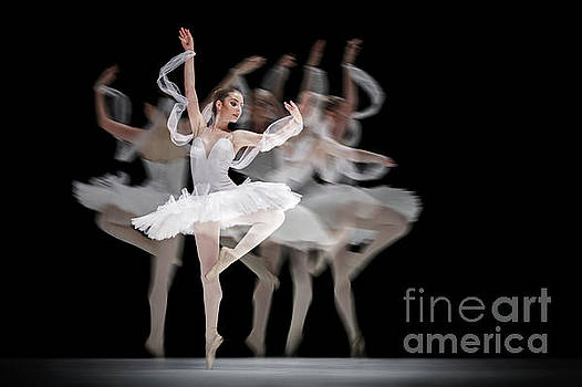 Dimitar Hristov - The Swan Ballet dancer