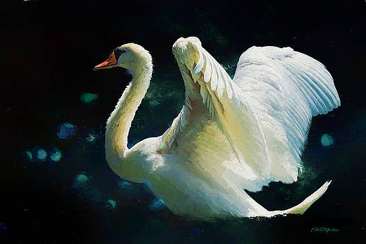 The Swan - Painting by Ericamaxine Price