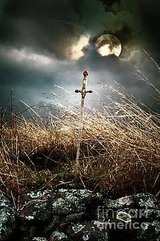 The Sword by Eleanor Caputo