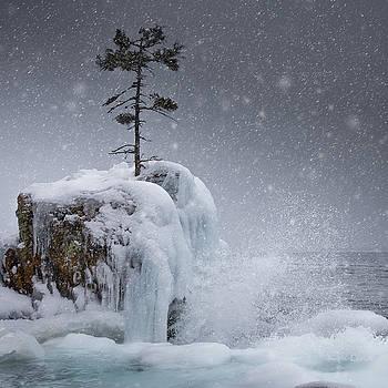 The Tee Harbour Rock by Jakub Sisak