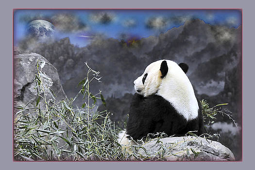Jonathan Whichard - THE THINKER Tai Shan in Repose Giant Panda