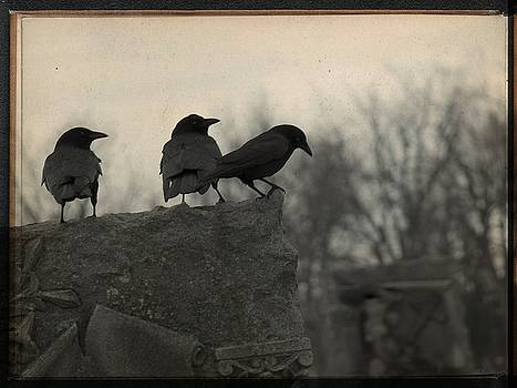 Gothicrow Images - The Three