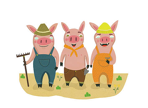 The Three Little Pigs by Nicole Wilson