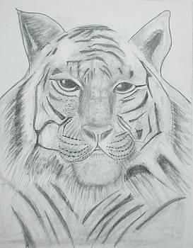 The Tiger King by Ramon Bendita