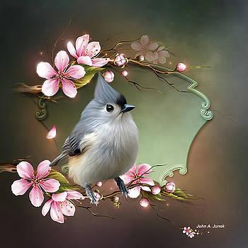 John Junek - The Tufted Titmouse a charming bird