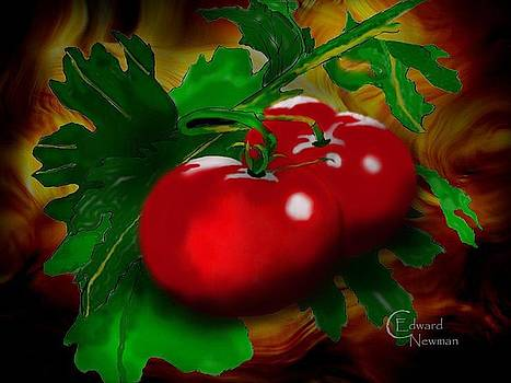 The Tomato  by Charles Newman