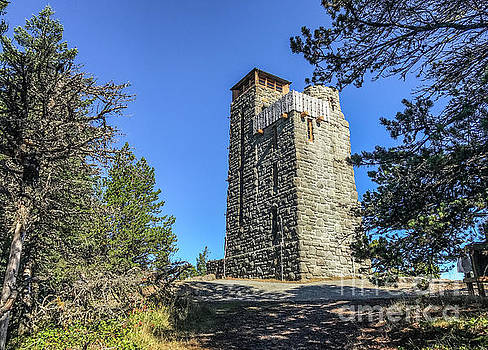 The Tower by William Wyckoff