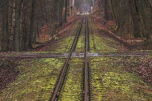 ReDi Fotografie - The track and the cross