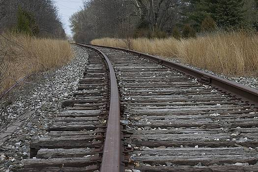 The Tracks by Danielle Allard
