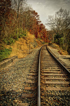 The tracks in the Fall by Mark Dodd