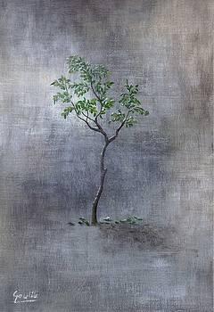 The Tree by Ewa Gawlik