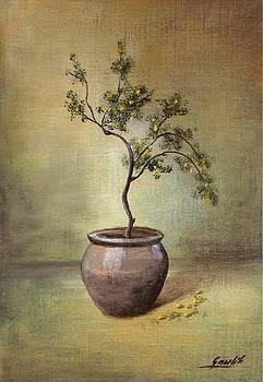 The Tree In The Flowerpot by Ewa Gawlik