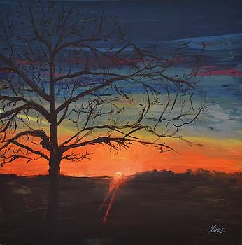 The Tree by Terri Einer