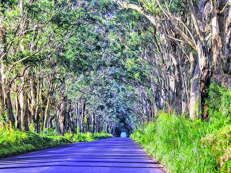 Dominic Piperata - The Tree Tunnel on Maluhia Road Kauai